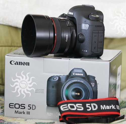 Canon EOS 5D Mark III with EF 24-105mm IS lens